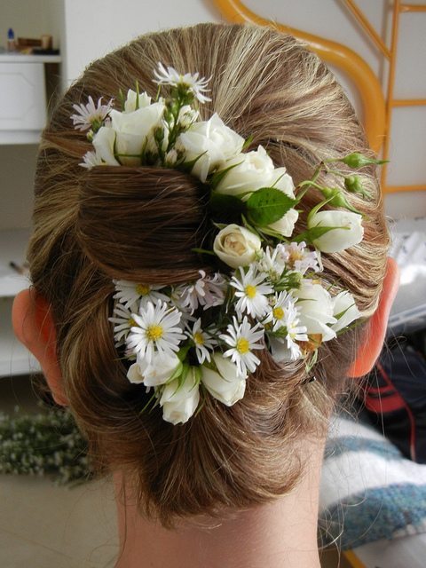 Diy flowers for hair accessories hot bachelorette Where did daisies originate
